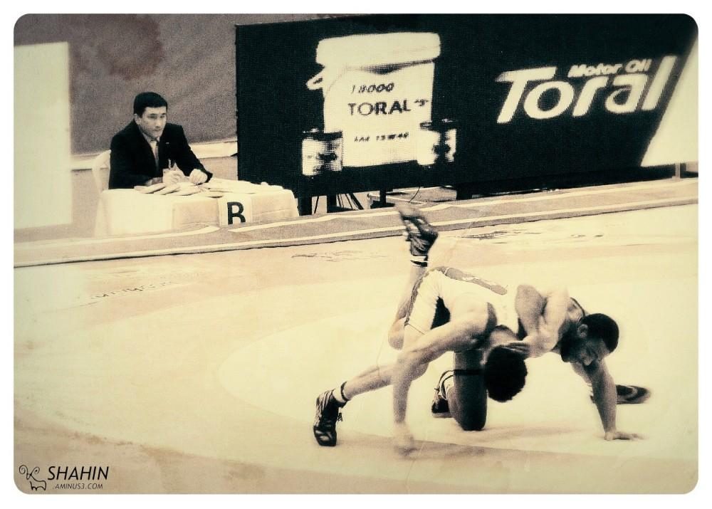 Tehran World Cup Free Style Wrestling 2013