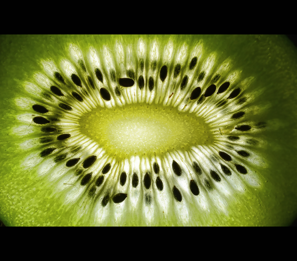 ... kiwi ...