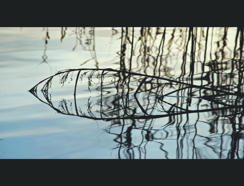 ... on the lake ...