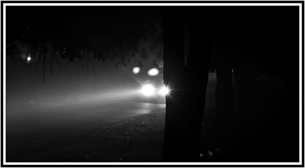 my street..during winter....a foggy evening