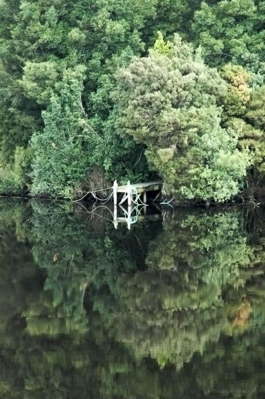 Gordon river reflection