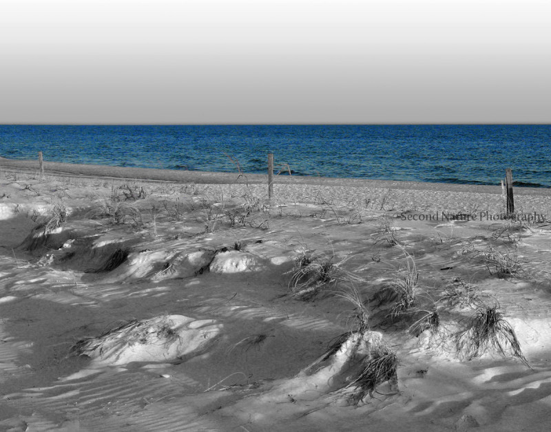 Took this shot on the Alabama Gulf coast.