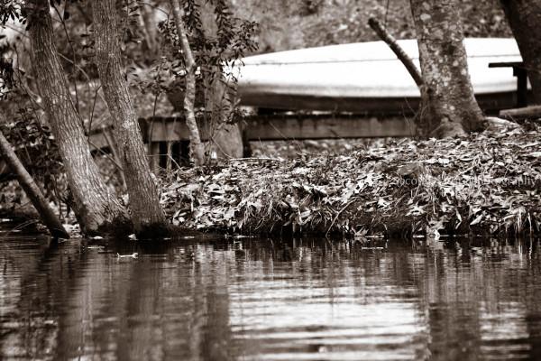 Took this photo in Lake Rosemound, LA