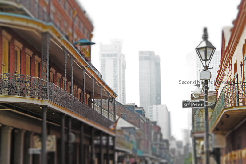 Photo taken in New Orleans, LA.