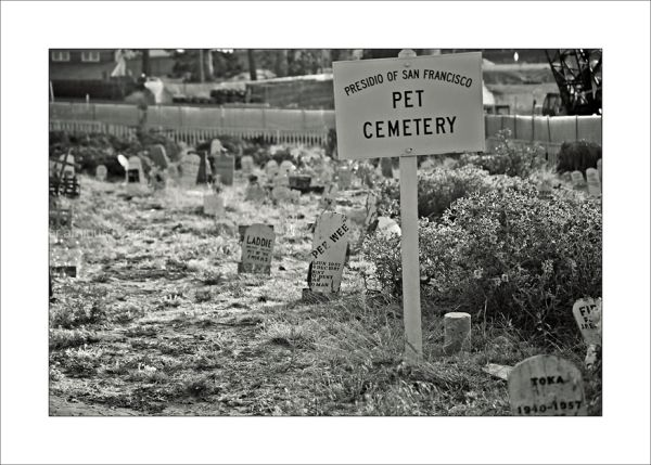 San Francisco Presidio Pet Cemetery