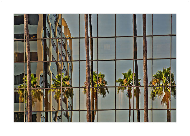 Los Angeles Hollywood Boulevard Reflections