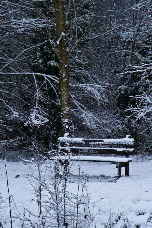 Un banc dans la neige