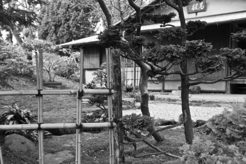 Albert Kahn's Garden in Paris