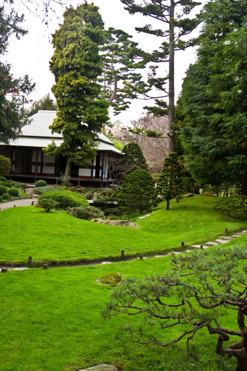 Albert Kahn's Garden in Paris II