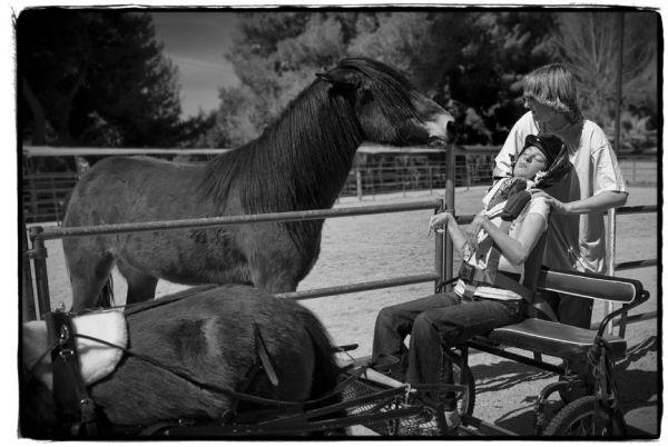 cerebral palsy girl rides horse cart