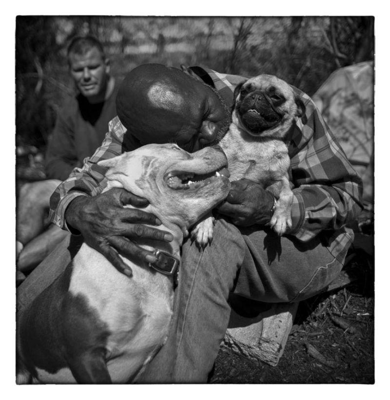 man hugs dogs