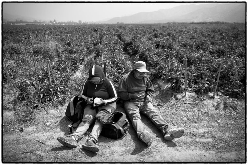 immigrant workers on lunch break