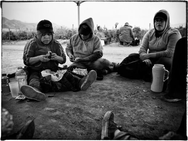 pickers eating snack