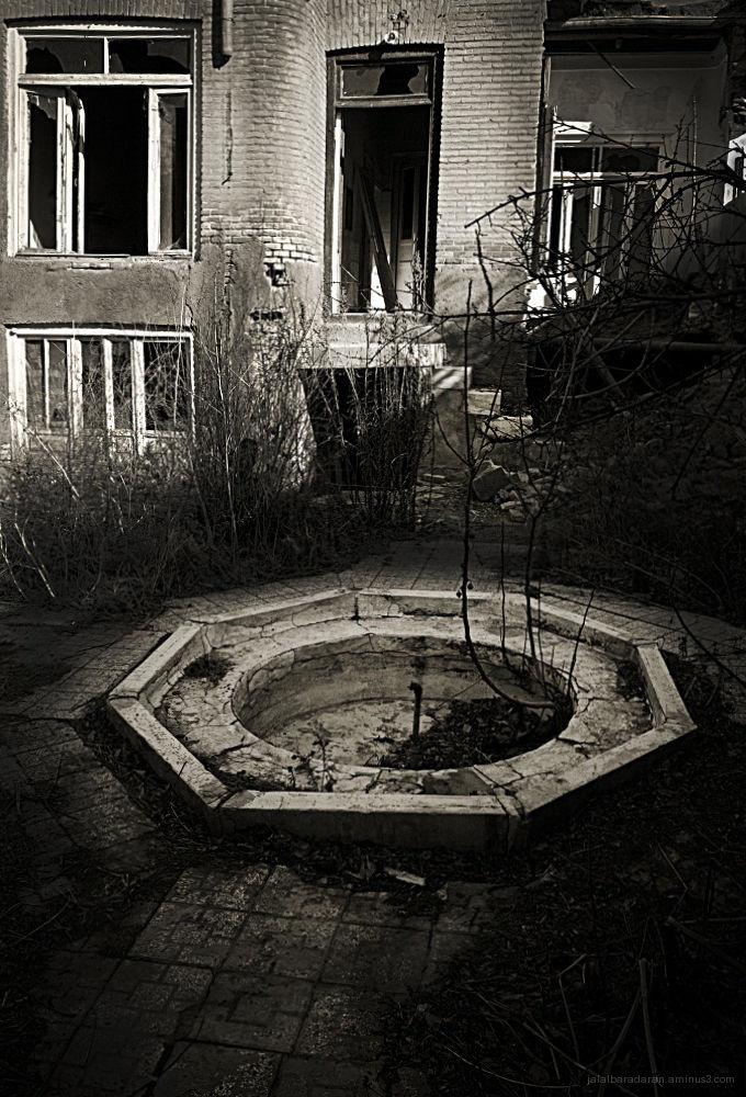 The yard...