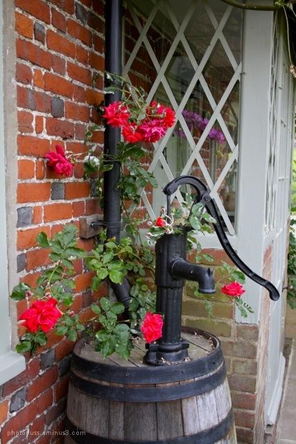 Ornamental pump