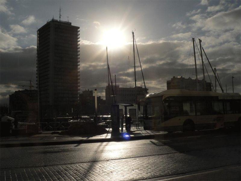 against full sun light   winter2008