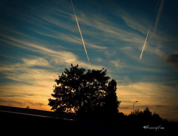 Evening Light in September