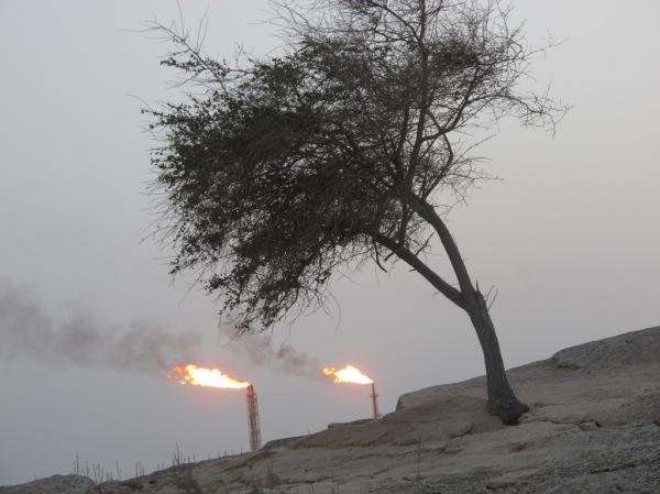 Gaz tree