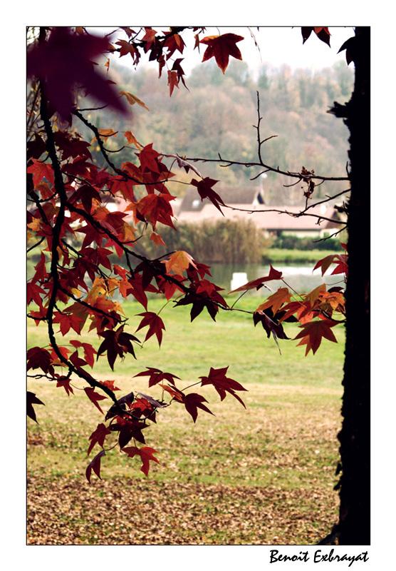 L'automne tire doucement sa révérence