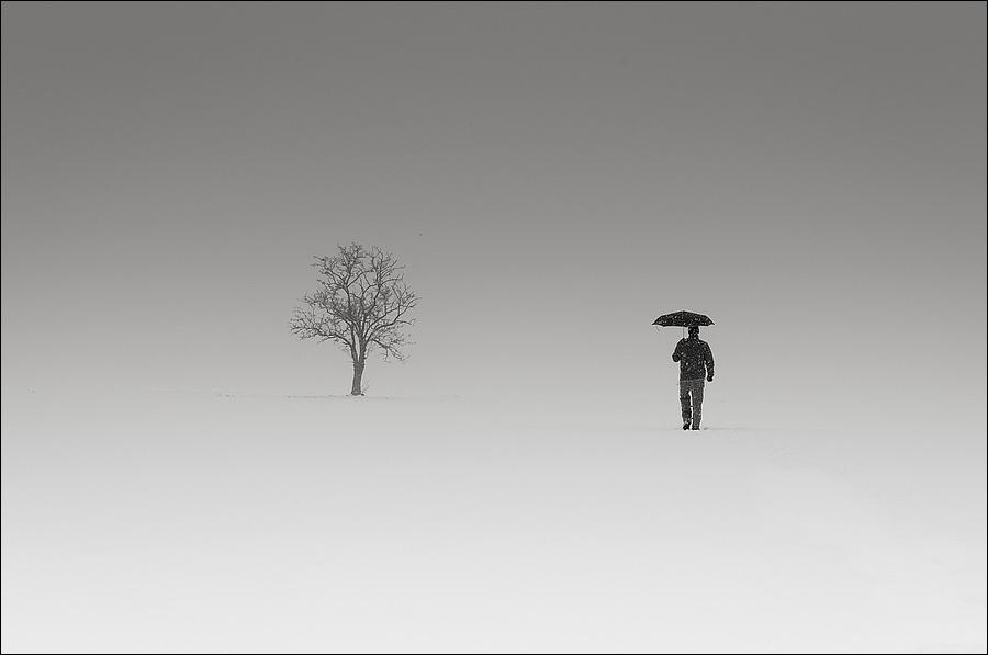 Landscape and minimalism with my umbrella