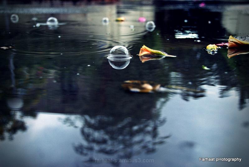 bubbles in the rain