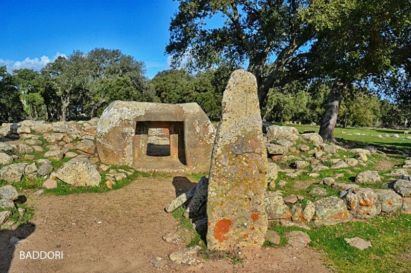 Complesso archeologico di Pranu Muttedu