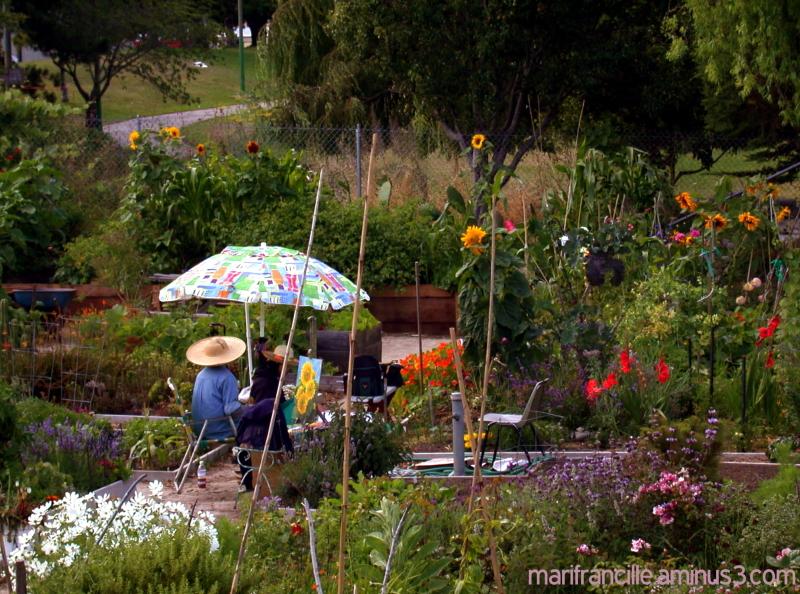 garden, painters, potrero del sol community garden
