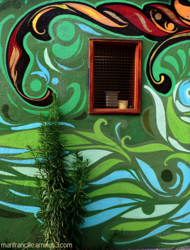 Green mural, green plant, san francsico