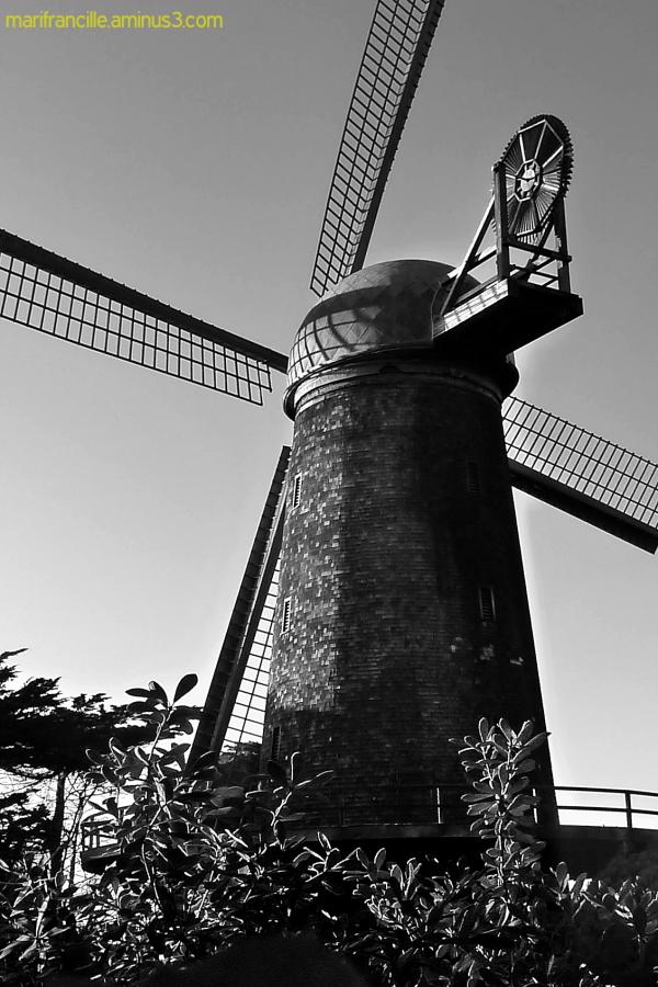 Golden Gate Park, Windmill, San Francisco