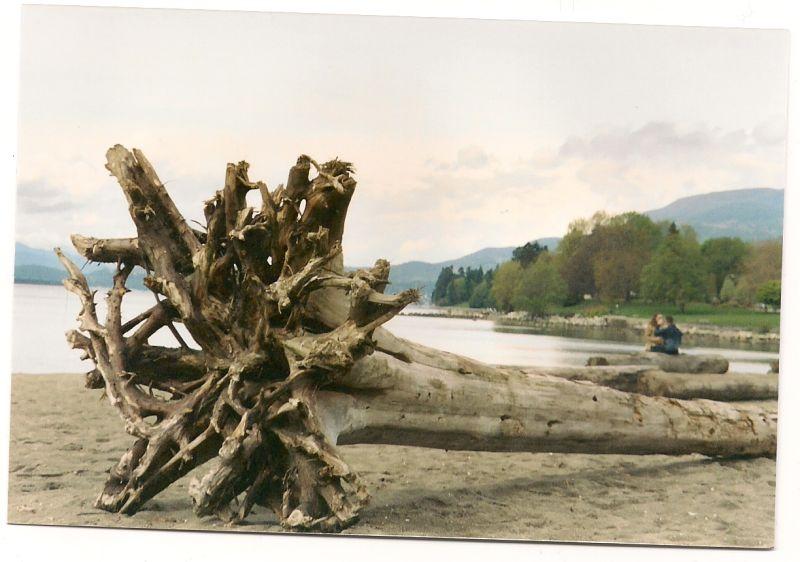 Vancouver 2004