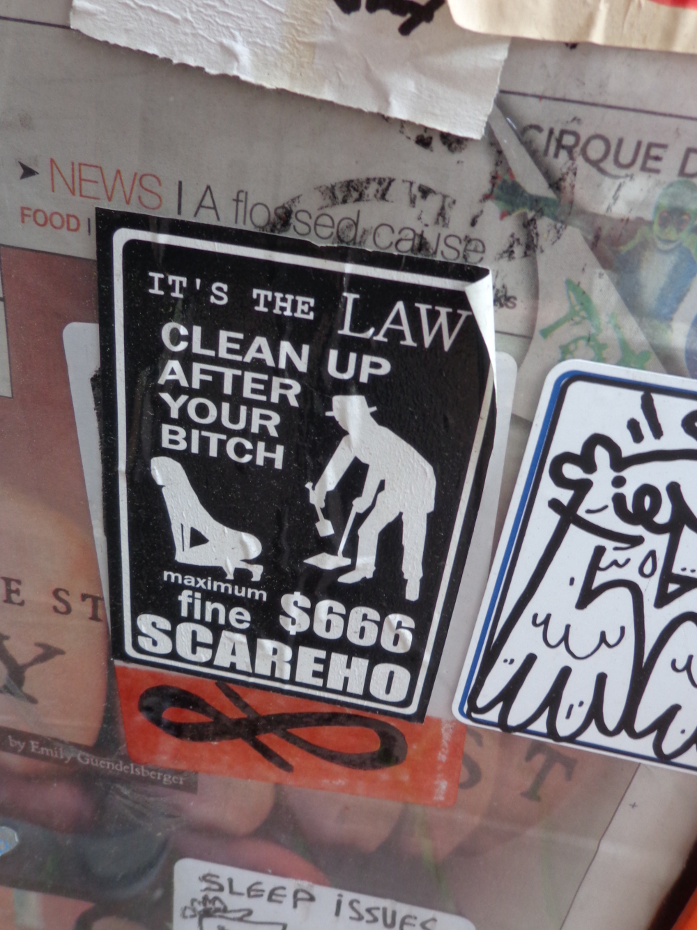 clean up after your bitch