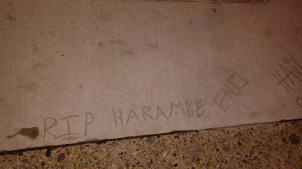 RIP Harambe