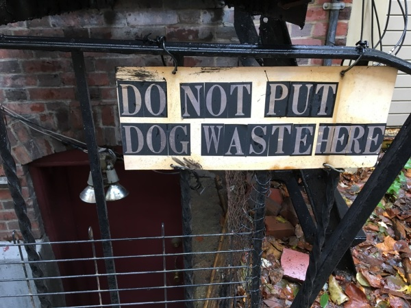 No dog waste
