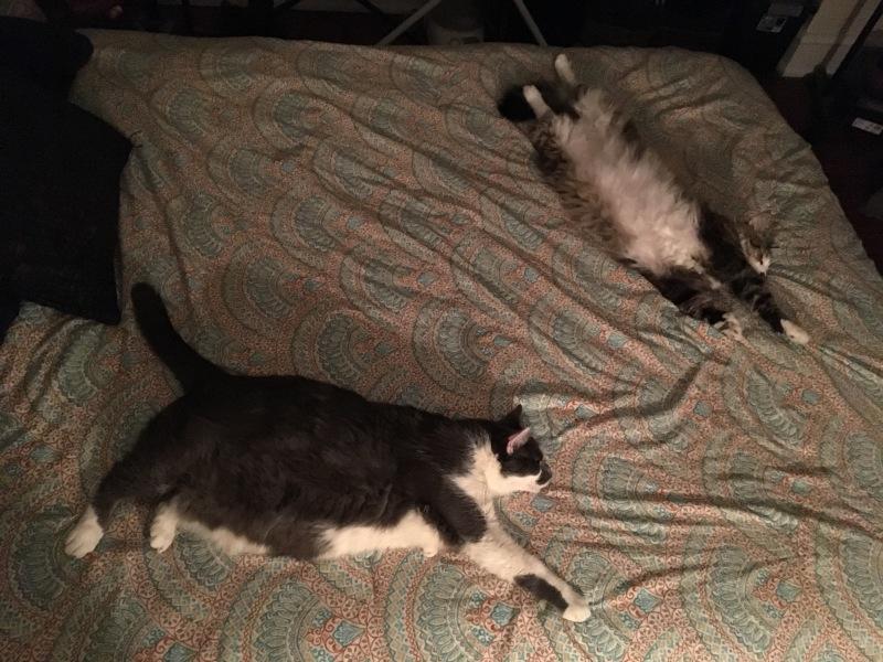 Louie & Leon