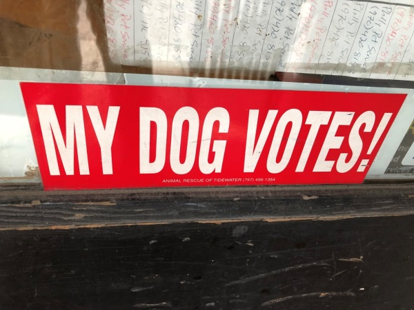 My dog votes