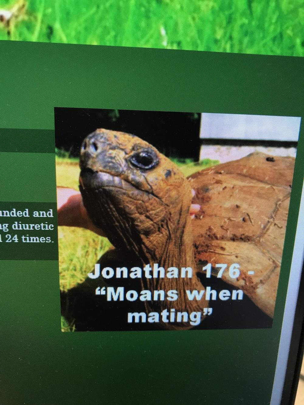 A reptile dysfunction
