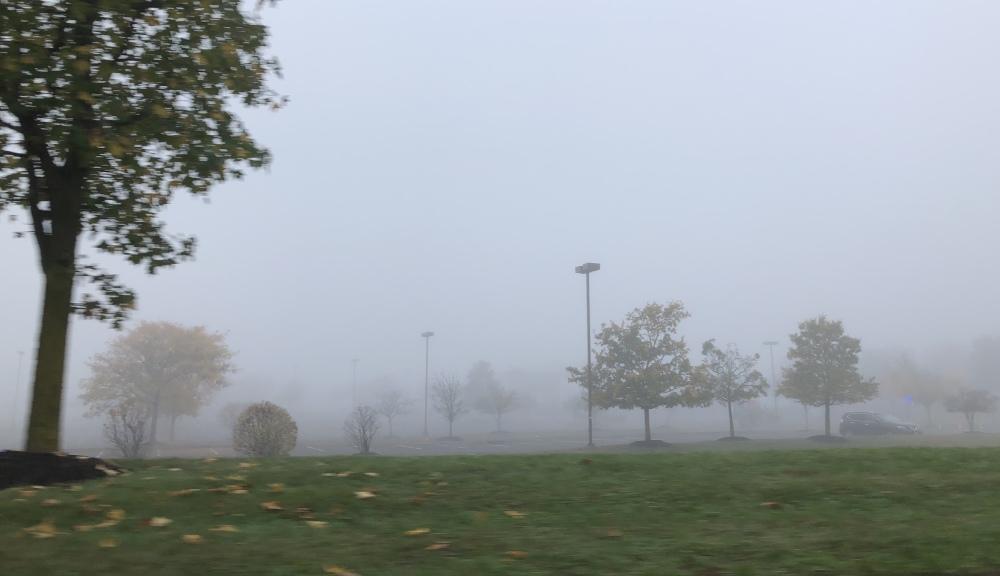 Fog, Voorhees, NJ #3