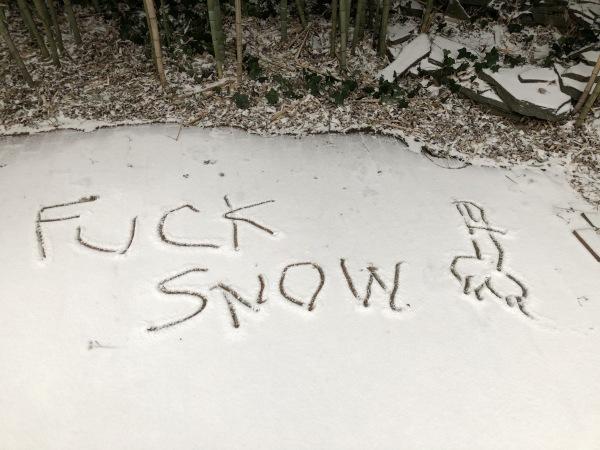 Fuck snow