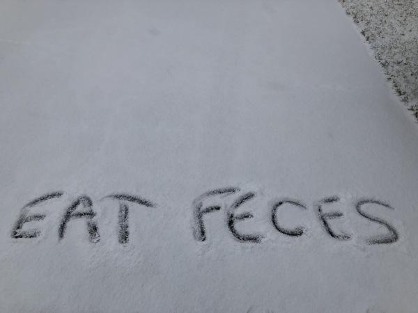Eat feces
