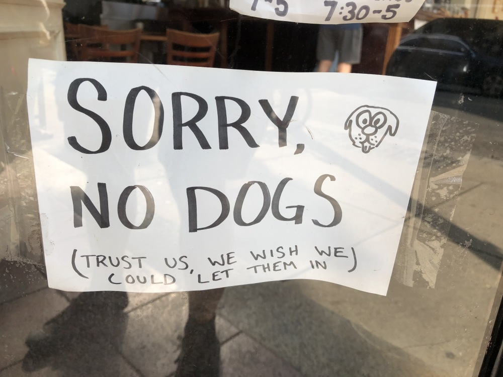 Sorry No Dogs