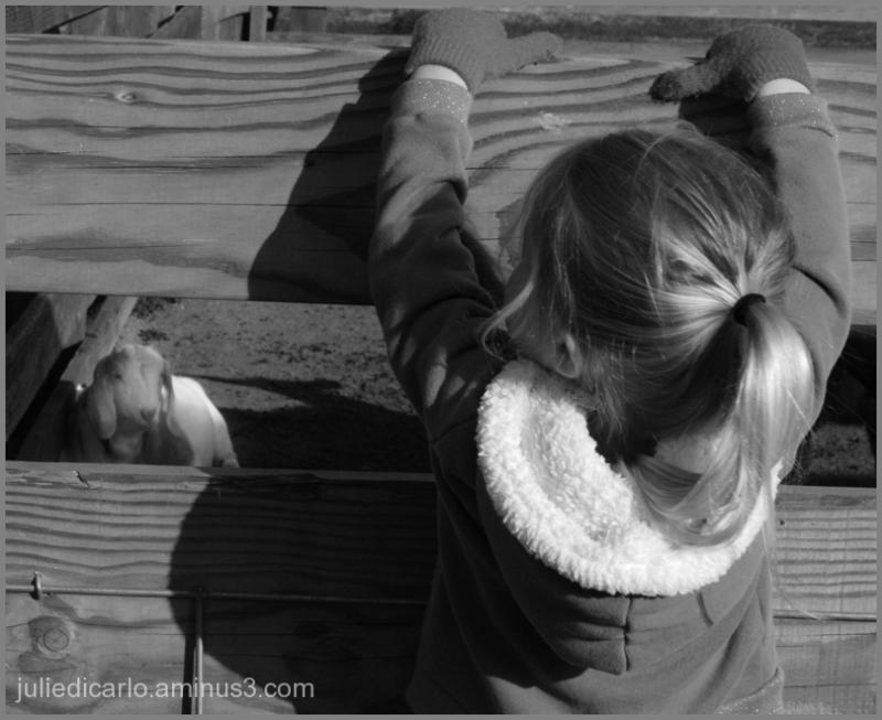 Kids at Ardenwood Farm