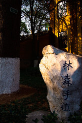 Beautiful Chinese calligraphy on a rock in Nanjing