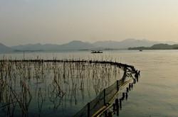 The West Lake of Hangzhou China Landscape