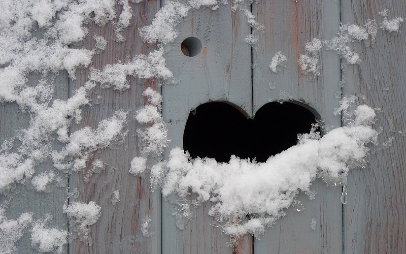 Saint-Valentin sous la neige !