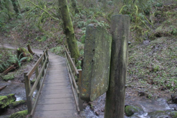 Bridge Over Untroubled Waters (1.23.11)