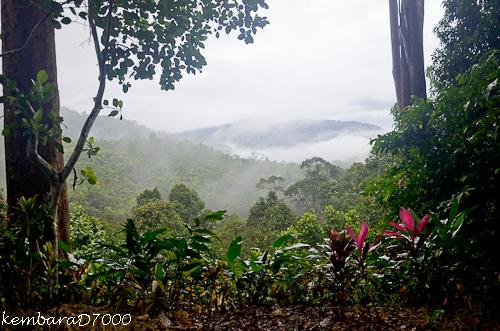 Morning view at Kpg Chennah