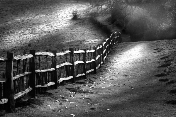 fence 2000