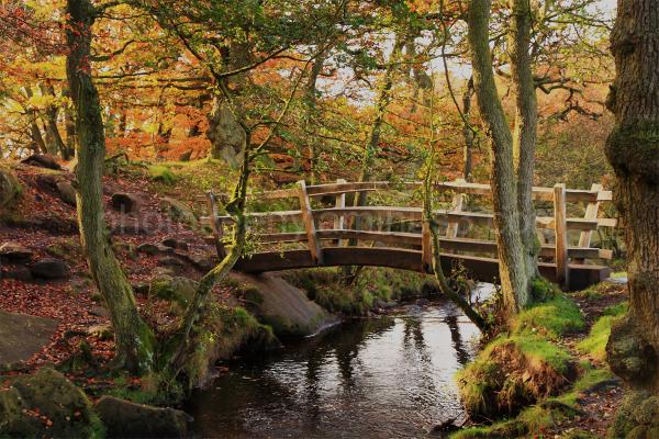 foot bridge in longshaw estate