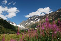 Vallée du Lötschental