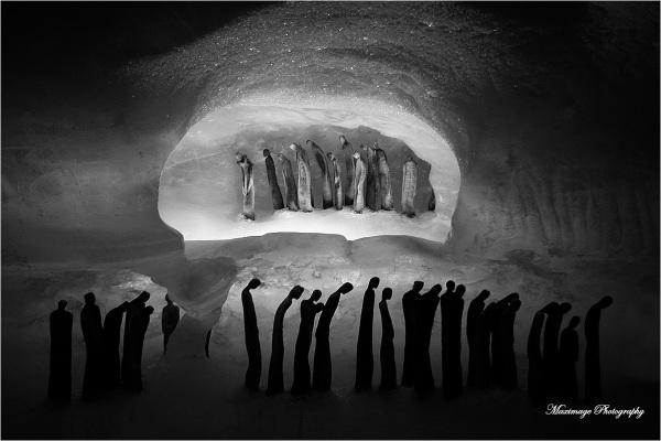 Les pénitents du glacier...